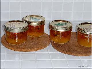 habanero gold jelly