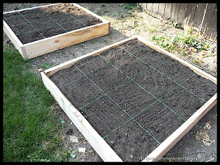 new raised beds prepared for planting