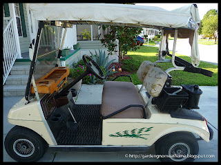 golf cart as purchased