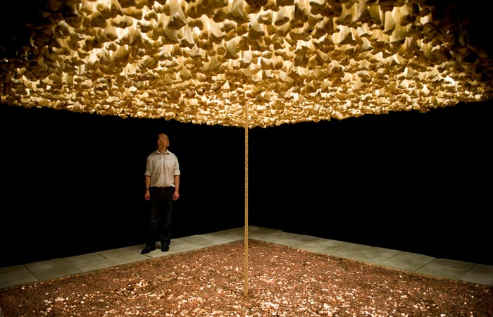 Cildo Meireles: From Sense to Concept, Studio International