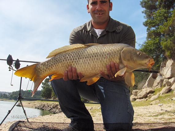 Carpa 6 kg 16 de Setembro 2008 14:20 h Granjal