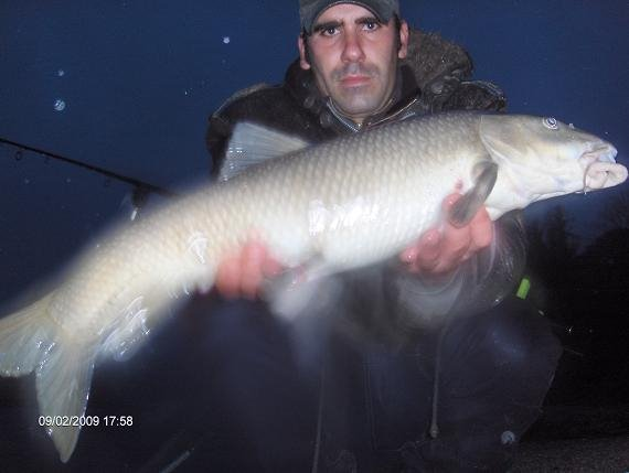 Barbo 3,9 kg 9 Fevereiro 2009 (muito comprido e magro)