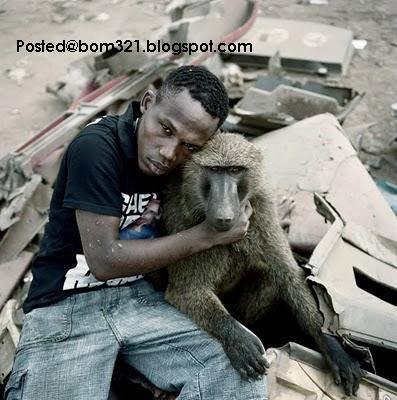 nigeria pet