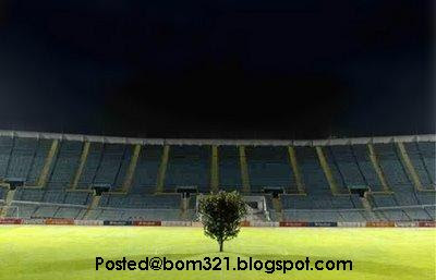 tree on stadium