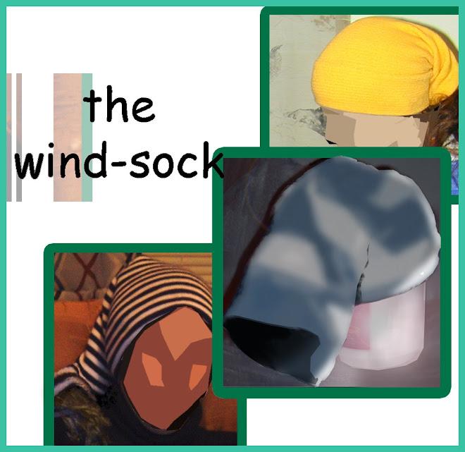 wind-sock
