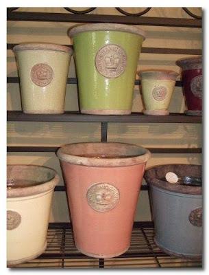 xantippe cowbridge garden pots