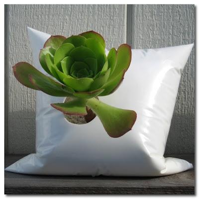 pillow vases daniel robb