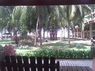 Pemandangan dari bilik hotel