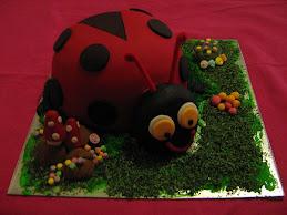 ladybug 26.9.09
