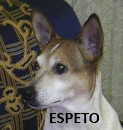 ESPETO