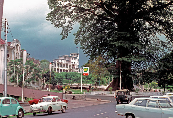 The Cotton Tree - Freetown