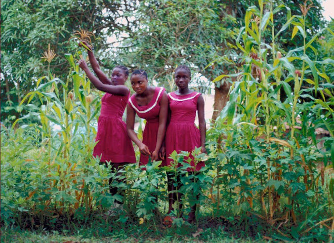 Sabina Tucker, Cecilia Banya, and Elizabeth Sama in school garden at HRSS Kenema