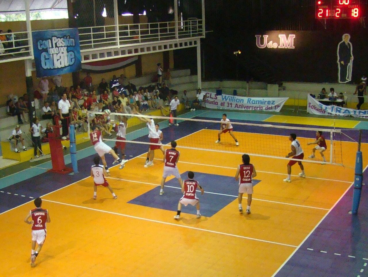 voleibol regla: