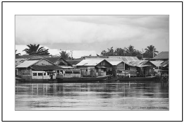 Littoral of Barito River