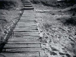 Caminito al mar.
