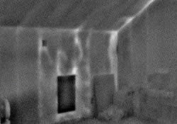 conductos de termitas vistos con infrarrojos