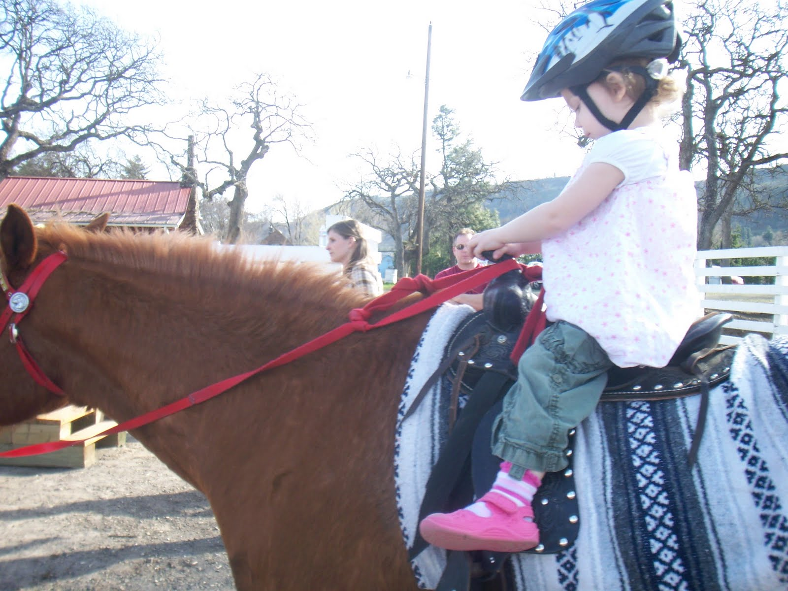hailey ready to ride ~ no fear ~ she loves animals