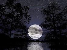 La noche es joven esperemos por el amor