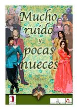 CARTEL MUCHO RUIDO Y POCAS NUECES