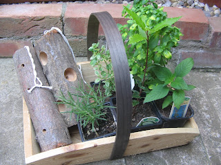 herbs and trug