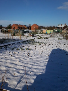 snowy allotment
