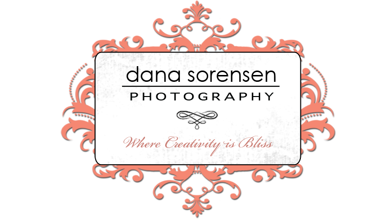 Dana Sorensen Photography