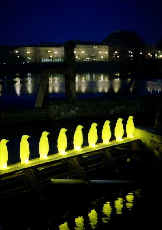 Penguins at Kampa, Prague