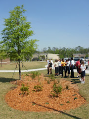 Leadership Class Rain Garden at Red Cedar Elementary School