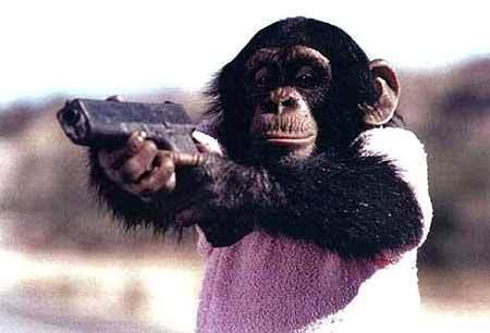 killer_monkey.jpg
