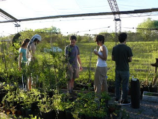 Punto cero hacia el futuro 2009 08 02 for Vivero plantas nativas