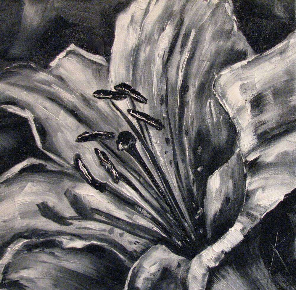 black and white pictures of lilies
