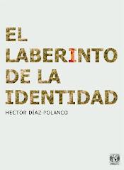 El laberinto de la identidad (2006)