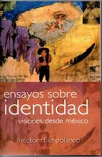 Ensayos sobre Identidad (2010)