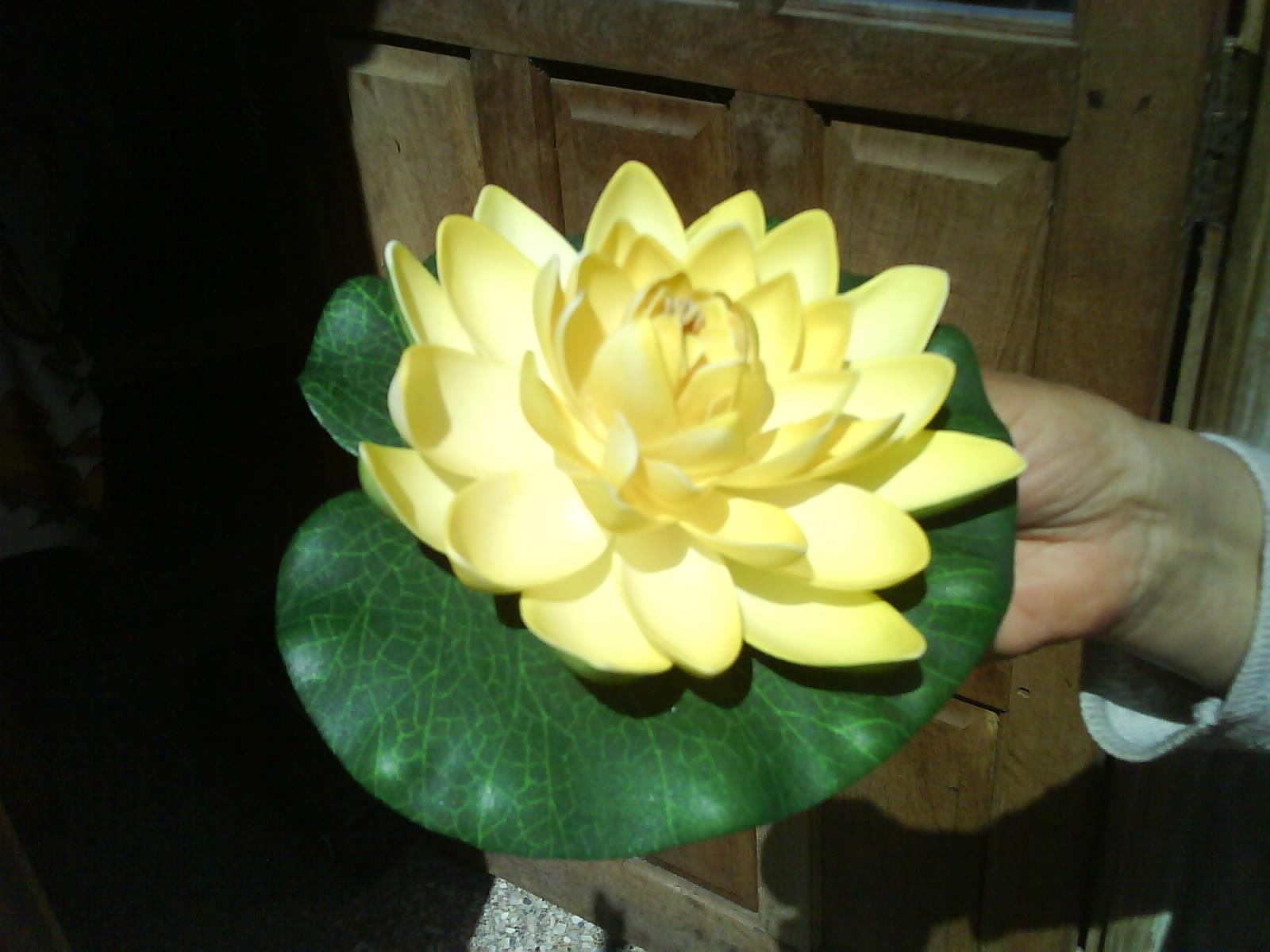 Imagenes flores en goma eva 17 mejores im 225 genes - Flores de goma eva ...