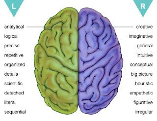 pengerian mengasah kemampuan otak kanan, cara membangkitkan fungsi otak kanan, bagian otak manusia dan kegunaannya