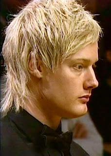 добрая треть опрошенных назвала лучшим игроком в снукер сезона 2008-2009 Нила Робертсона