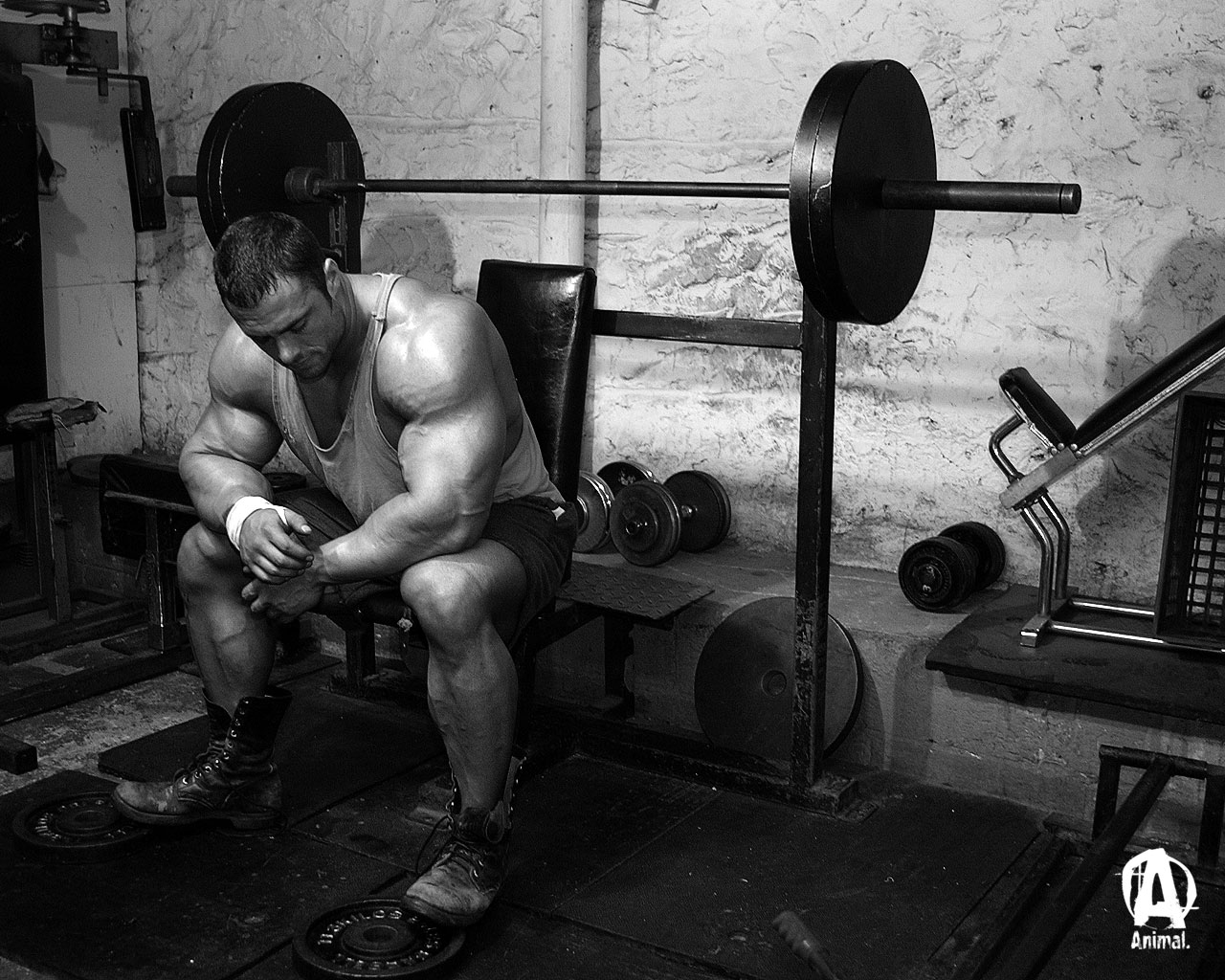 hd wallpapers  Wallpaper Frank Mcgrath