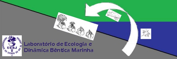 Laboratório de Ecologia e Dinâmica Bêntica Marinha - Marine Benthic Ecology Lab