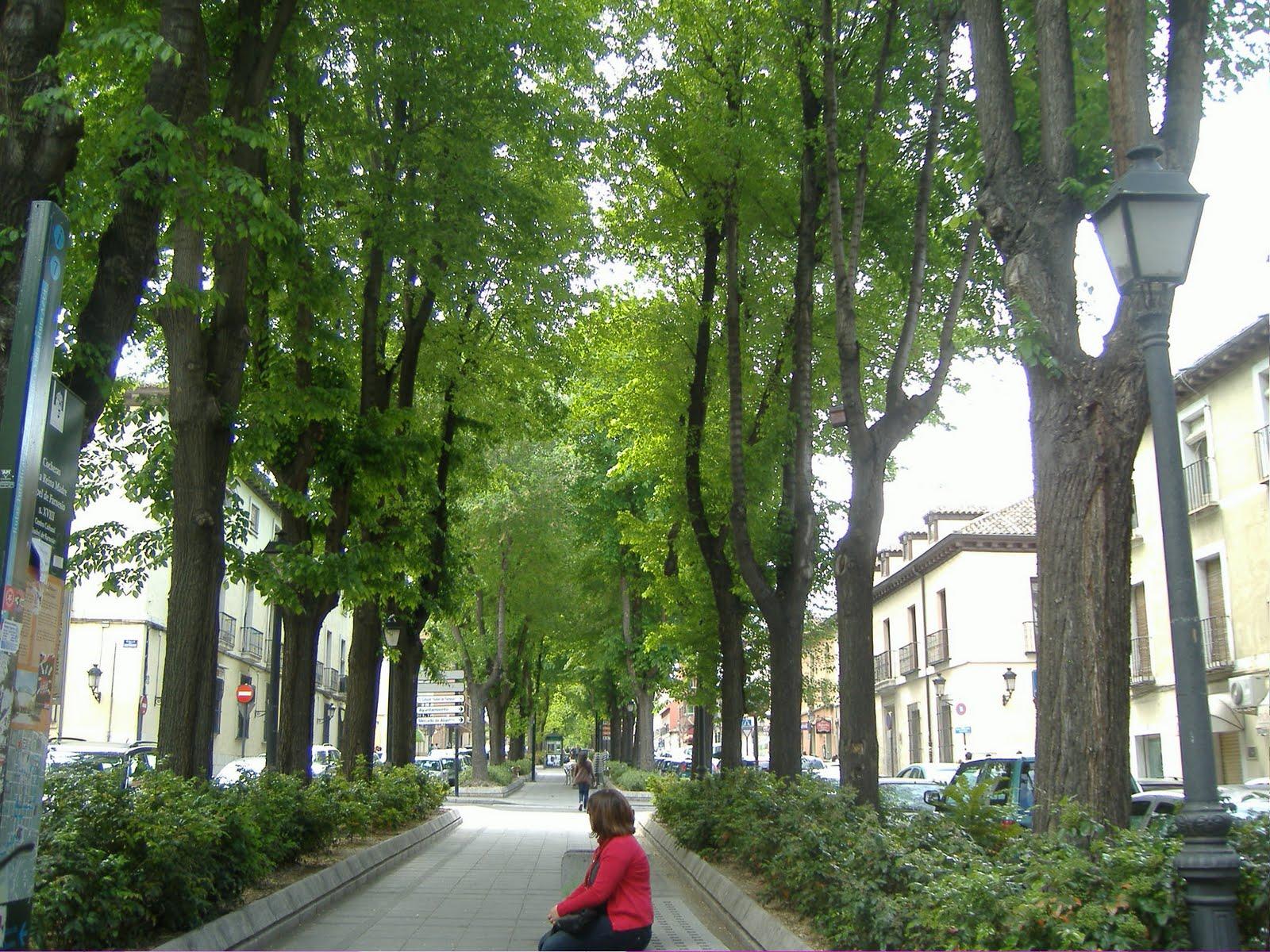 Prejubilada sin fronteras 4 paseo historico campestre for Cementerio jardin del mar