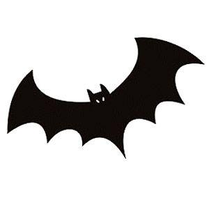 mundo curioso 11 motivos para gostar de morcegos