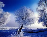 Зима 2010 погода