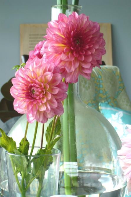 [Amy+Butler+pink+Flower.jpg]