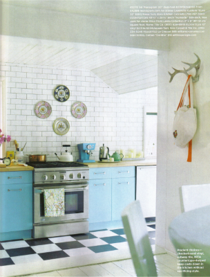 [antlers+as+hooks+in+blue+kitchen.png]