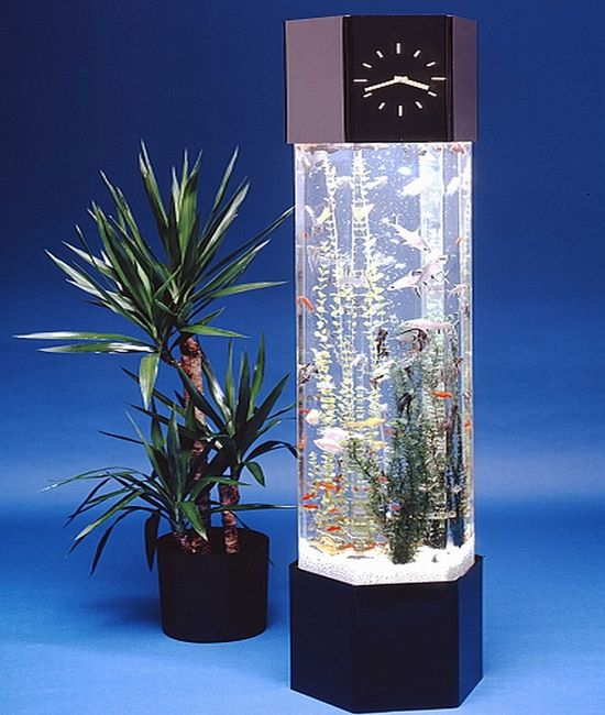 pictovista 15 cool fish aquariums. Black Bedroom Furniture Sets. Home Design Ideas