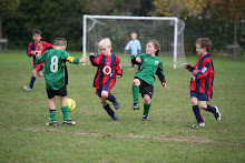 Whitton Wanderers Under 8 Eagles Homepage