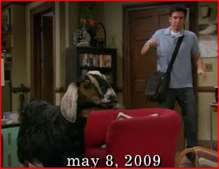 Ted sees a goat in his apartment in May 2009