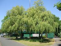 Exhibition Park