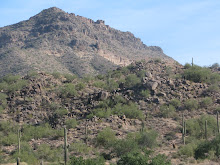 Mountain in Mesa, AZ (near Phoenix)