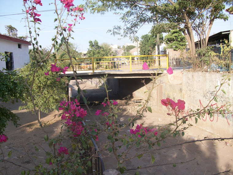 Arroyo del Piojo en Cd. de Culiacán Rosales