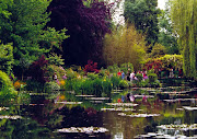 Colírio a la Monet